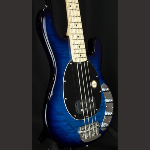 STERLING Ray34QM Maple Neck 4 String Bass