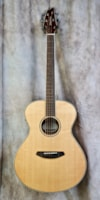 Breedlove Pursuit Exotic Concert E