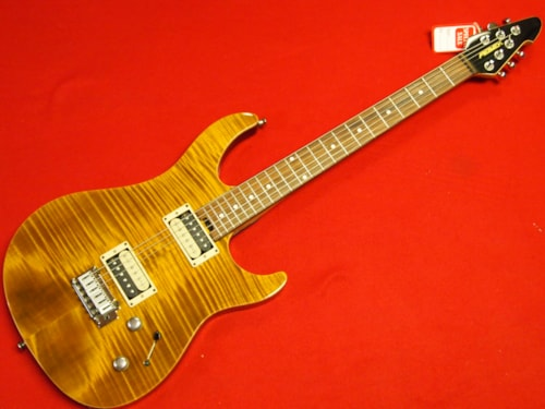 1991 Peavy ST CUSTOM SHOP