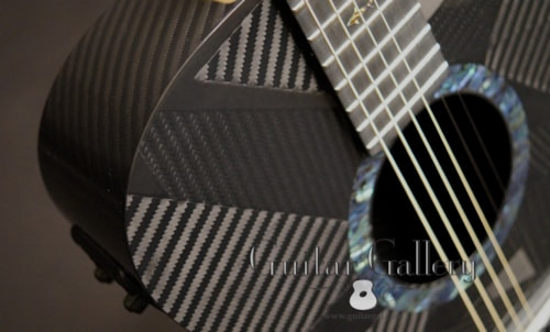 RainSong Graphite Guitars BI-WS1000N2