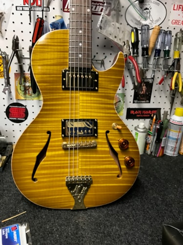B&G Guitars Little Sister Private Build