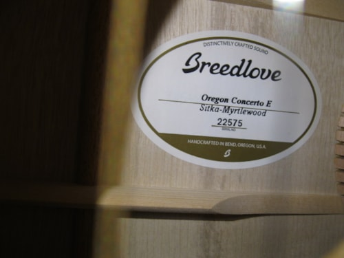 2017 Breedlove Oregon Concerto E