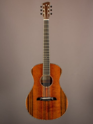 2016 Wilborn Guitars Lion