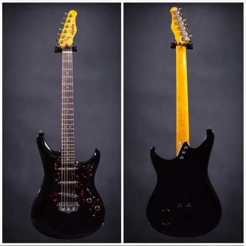 2014 Scott Walker Guitars Electro