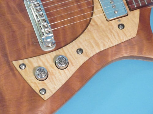 Peter Malinosky Custom Single Pickup Solid Body