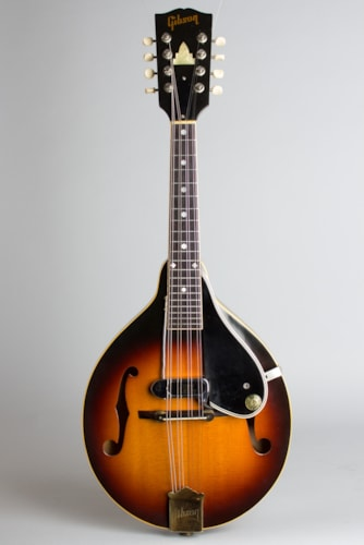 1962 Gibson A-50 Modified by Ray Matty