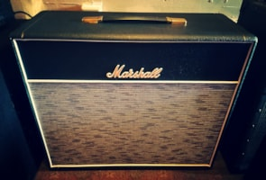 2005 Marshall 1974CX 1x12 Amp Cab - Celestion
