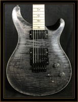 Paul Reed Smith Dustie Waring DW CE 24 Limited Edition