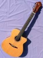 2002 Nickerson FC3: Rare Flat Top 7 String