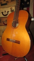 1966 Goya G-17 Classical Nylon String Electric