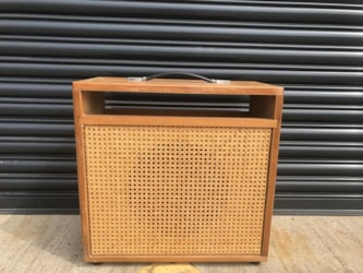 Dumble Overdrive Special Export Combo Casing