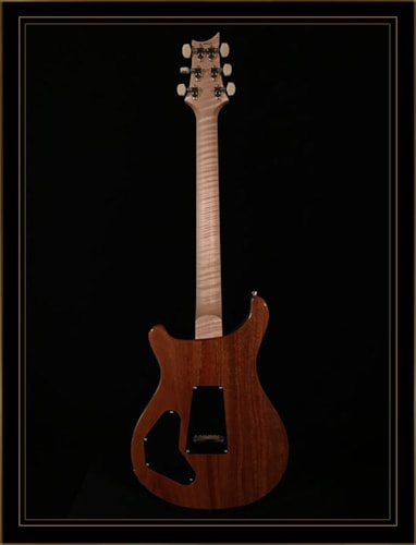 Paul Reed Smith Wood Library DGT with Quilt Top Maple Neck and Fretboard