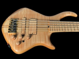 2018 Warrior Dran Michael 5-String Bass w Flamed Maple Top