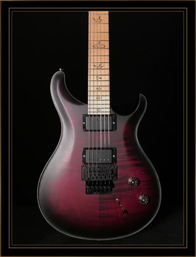 Paul Reed Smith Dustie Waring DW CE24 Floyd Limited Edition